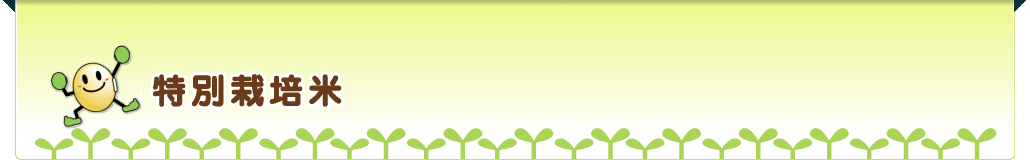 特別栽培米 ガイドライン表示